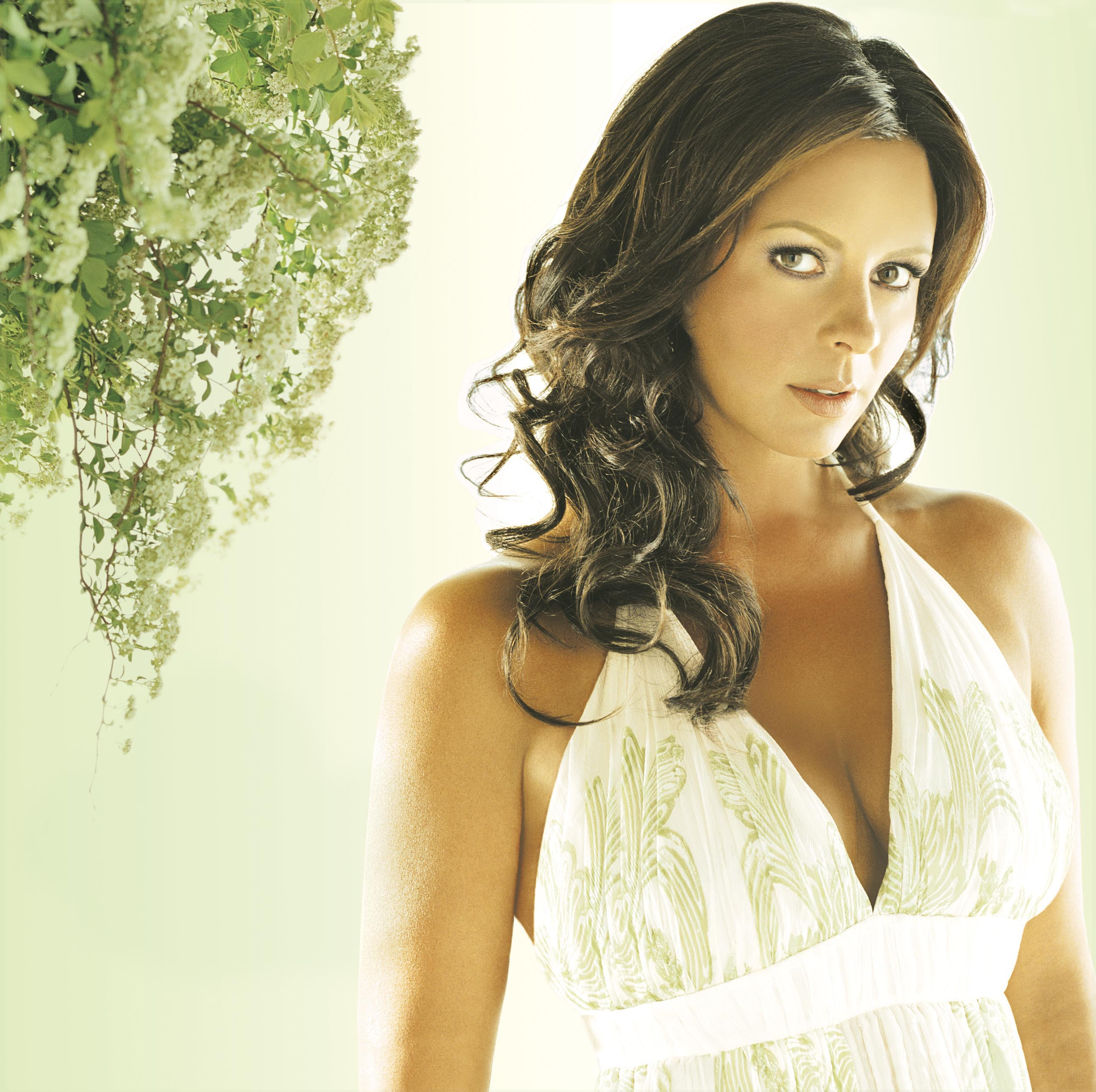 New single from sara evans sounds like nashville jpg 2583x2572 Recent sara  evans