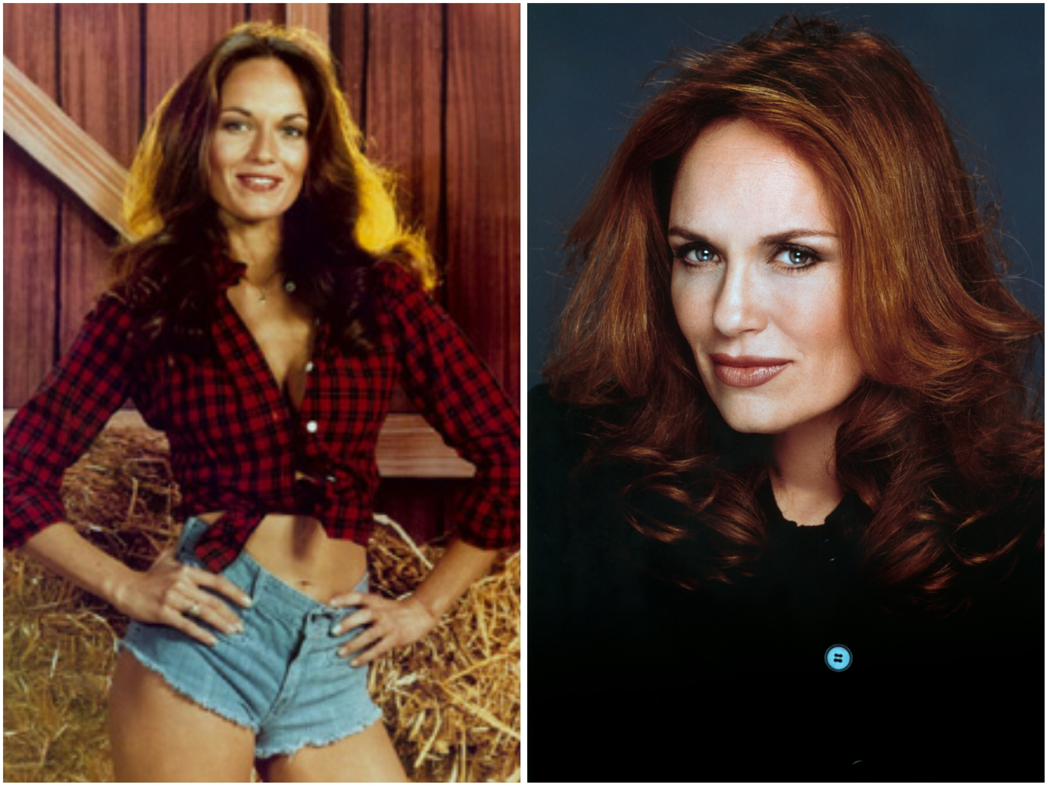 pics Catherine Bach