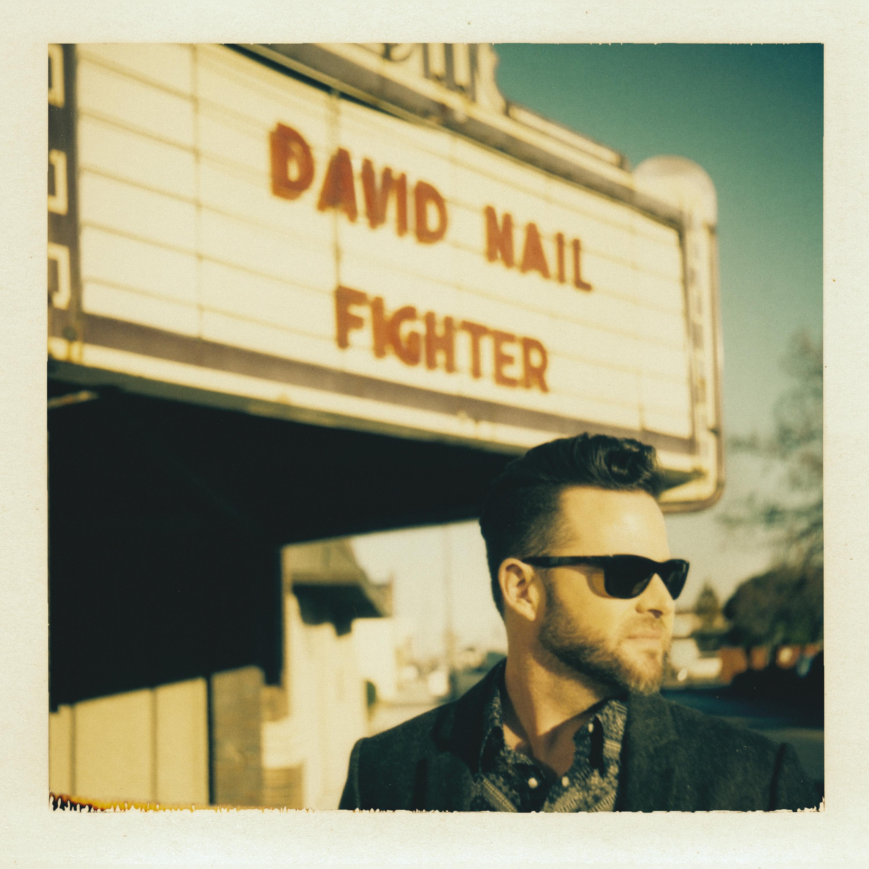 David Nail - The Fighter