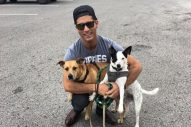 Dan + Shay Partner with Petco to Promote Puppy Safety on the Road
