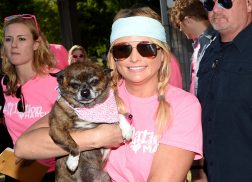 Miranda Lambert Deploys MuttNation Foundation to Help in the Aftermath of Hurricane Harvey