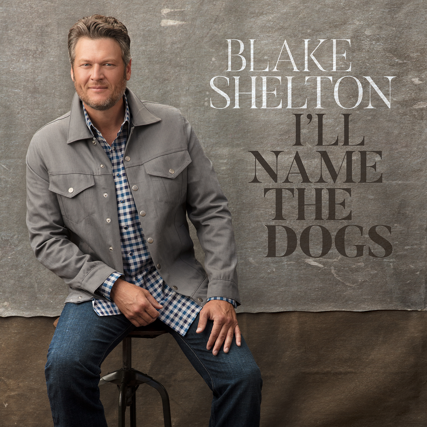 Blake Shelton I Ll Name The Dogs