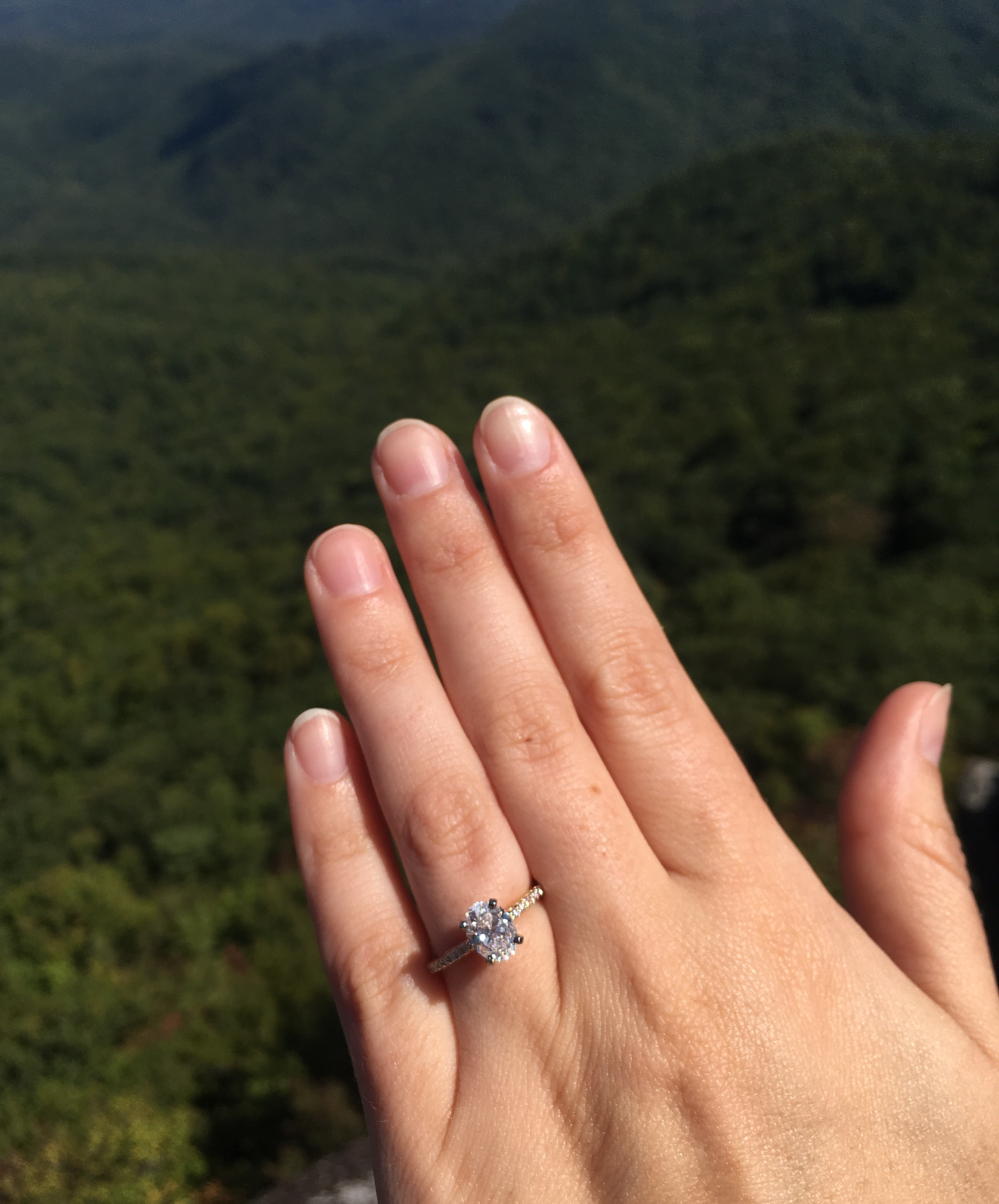 Singer Scotty McCreery proposes to longtime girlfriend