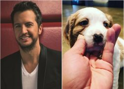 Luke Bryan Got a Puppy Just in Time For Christmas