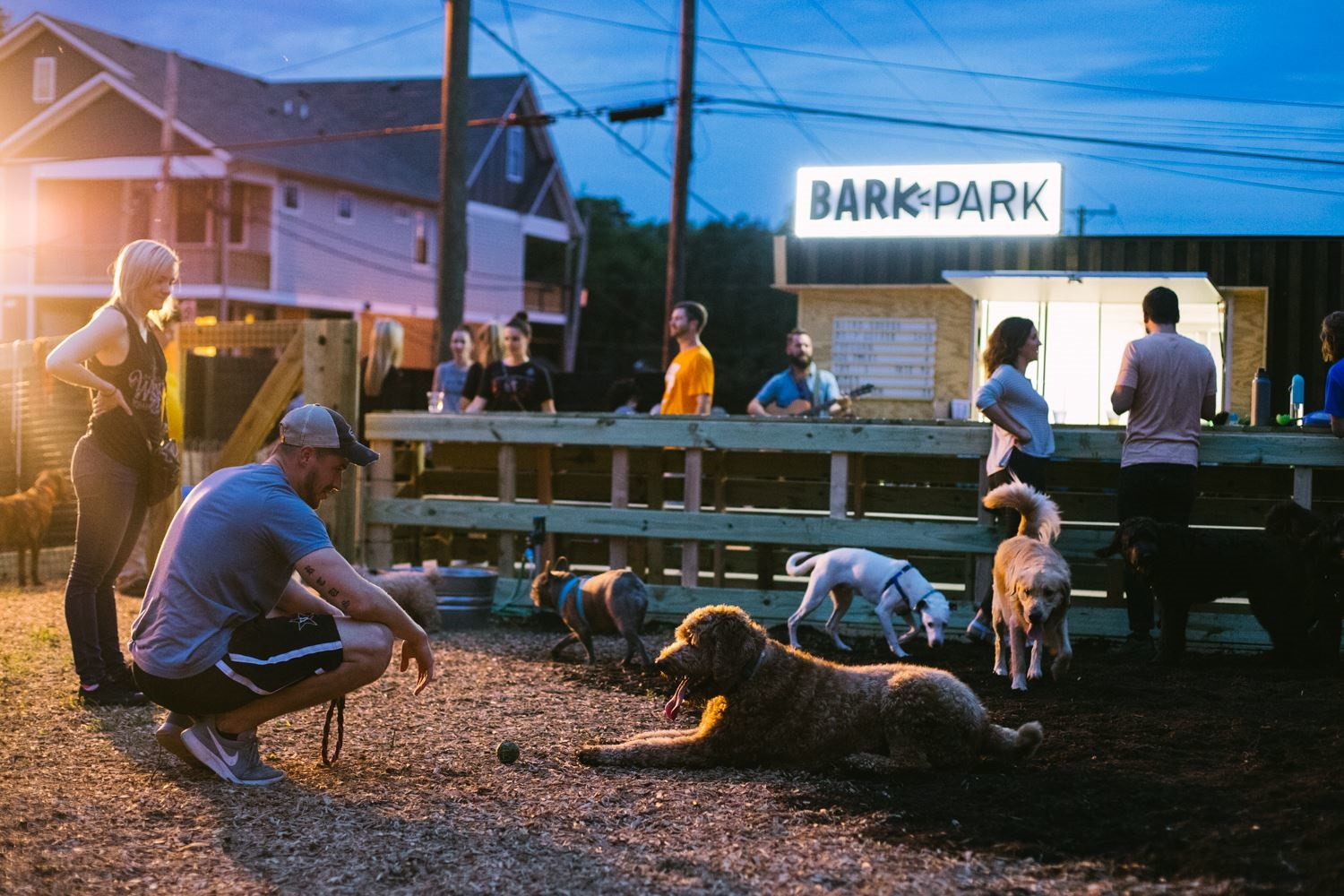 BarkPark; Courtesy photo