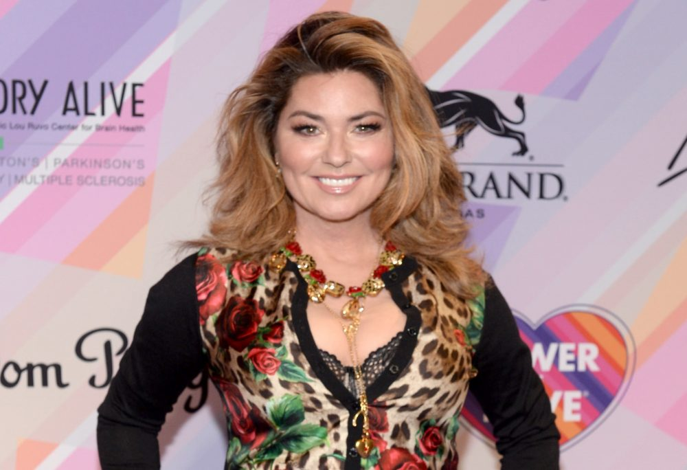 Shania Twain to Co-Star in Jeremy Camp Biopic 'I Still Believe'