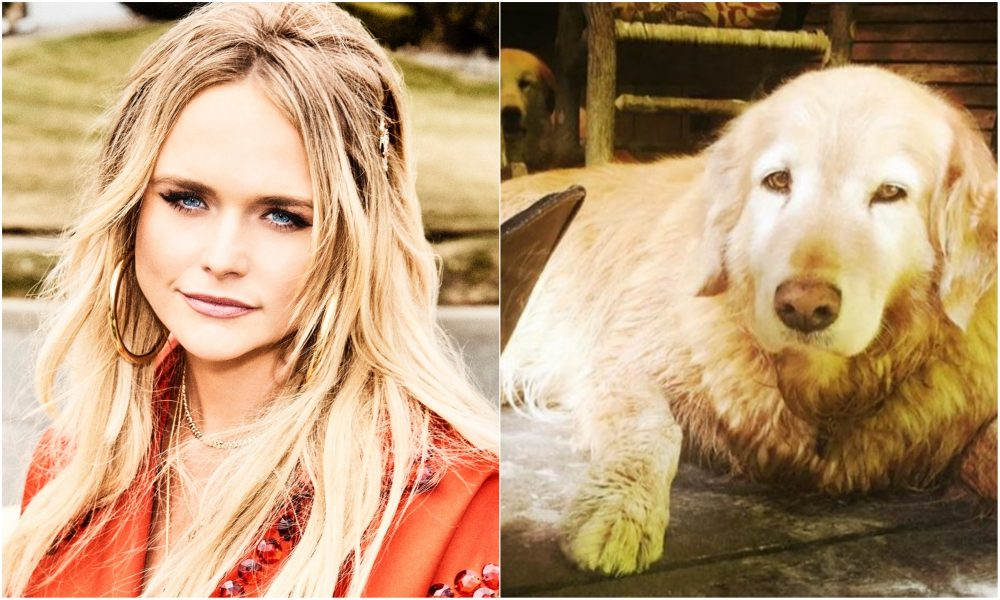 Miranda Lambert Plants Tree In Honor Of Her Dog, Waylon